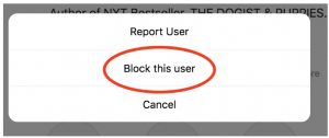 block an Instagram user