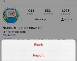 report an Instagram user